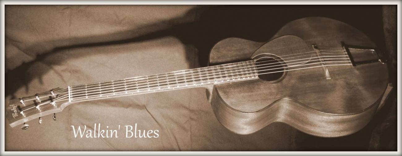 Guitare Parlor Folk