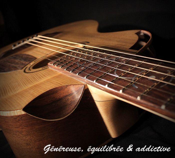 guitare folk épicéa noyer