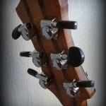 Guitare Folk OM palissandre