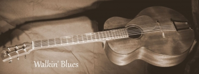 Guitare blues folk acajou