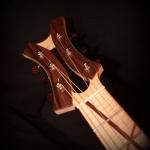 guitare Jazz rock concept Hollow body