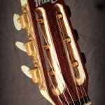 Guitare jazz swing épicé palissandre