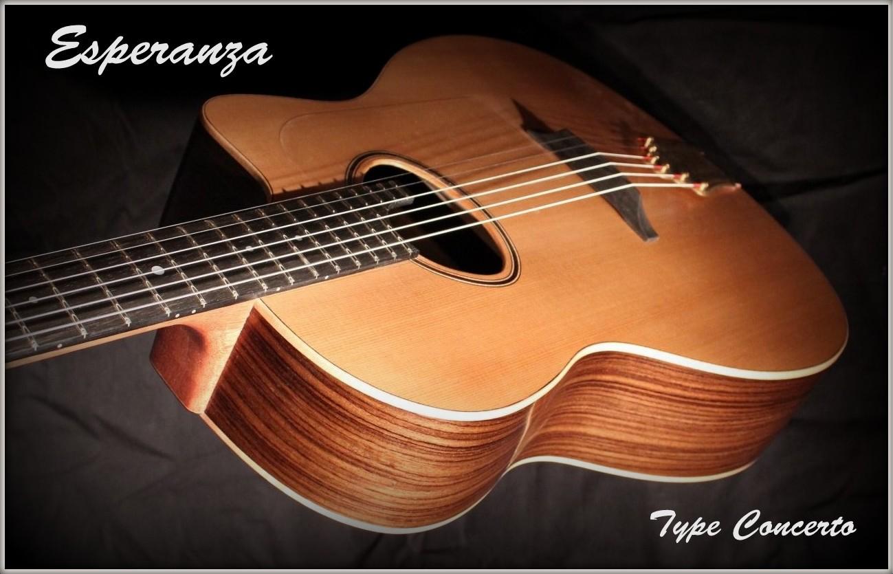guitare palissandre cèdre