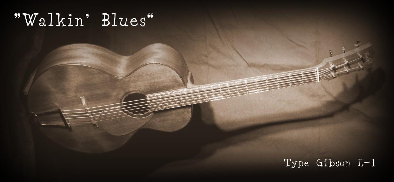 Guitare folk blues