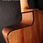 pan-coupé guitare luthier artisan